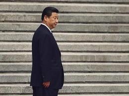 中国援助埃博拉 官商唱反调
